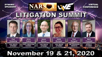 narsol's-litigation-summit-webcast;-sign-up-now!